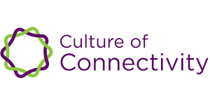 Read more about the article The Culture of Connectivity: Big Owners versus Users (2019)
